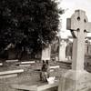 Кресты Кельтов