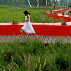 Red Ribbon великая китайская скамья