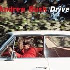 Andrew Bush«Vector Portraits»