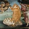 Новый взгляд на полотна великих художников. В главной роли кот