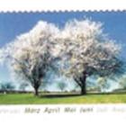 Postcrossing — дружим открытками