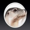 Изобретён генератор слухов о продуктах компании Apple