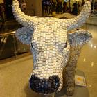 Парад коров