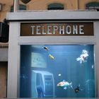 Аквариум в телефонной будке
