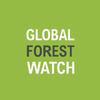 Появилась интерактивная карта мировых лесов