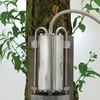 Энергию роста деревьев можно использовать в производстве