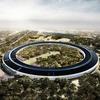 В Cети появились подробности проекта нового офиса Apple