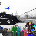 Магические зонты