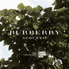 Burberry выпускают альбом саундтреков
