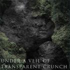 «Bzhn. — Under a veil of transparent crunch», ищет