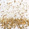В российском павильоне в Венеции устроили золотой дождь