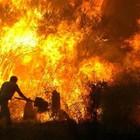 Аномальная жара как оружие массового поражения