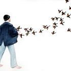 Jeffrey Beebe – боязнь обыкновенных птиц