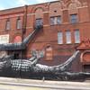 Животный стрит-арт от бельгийского граффитчика ROA