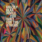 Grizzly Bear: While You Wait for the Others