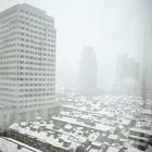 Шанхайский снег