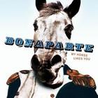 Новый альбом Bonaparte