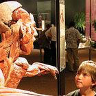 Gunther vоn Hagen и его выставка «Мир Тела»