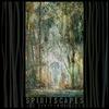Симфонический оркестр от Soft Note в новом альбоме «Spiritscapes»