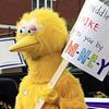Выборы-выборы: Обама, Ромни и Большая Желтая Птица