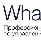 Онлайн-трансляция конференции Whale Rider
