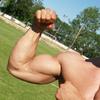 Экспериментальный препарат стимулирует рост мышц без упражнений