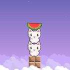«Cat Cat Watermelon»