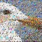 Photomosaic: аналитическое искусство