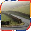Великобритания: Цветные скалы, чесночная ферма и вкуснейшие бургеры на острове Уайт