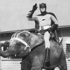 Бэтман как цирк