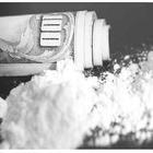 Кокаин не пройдет!