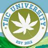 Студенты «университета марихуаны» в Денвере приступили к занятиям