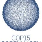 Климат, До Копенгагена осталось две недели
