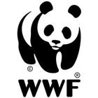 Рекламная кампания WWF Give a hand to wildlife