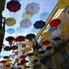 Фотоконкурс Солнечный дождь