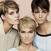 Max Mara, Prada и другие марки выпустили новые кампании