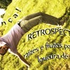 Retrospection - Roots and fruits p4 mix of sambass, brazil & jazzy dnb