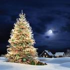 Дед Мороз и Санта Клаус: 10 отличий