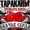 Официальная премьера клипа группы «Тараканы!»