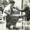 Лондонский Зоопарк 30-х