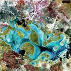 Фотографии Земли, снятые со спутников NASA