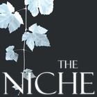 Синти-поп. The Niche. Любят Dm!