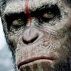 Вышел финальный трейлер сиквела новой «Планеты обезьян»