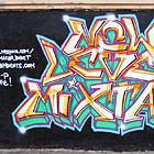 Anteater x 158