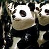 О пандах, роботах и единорогах