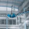 Компания Festo представила летающего робота-стрекозу