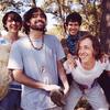 Animal Collective поделились новым альбомом до релиза