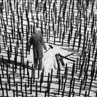 Gilbert Garcin – черно-белые истории