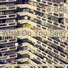 What Do You See @ MixCult Podcast # 046