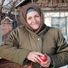 Алматинские яблочки – миф?